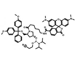 6-TAMRA phosphoramidite Pro