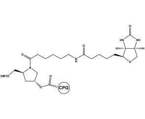 Biotin-Pro CPG