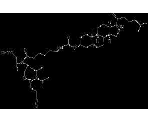 Cholesterol Pro phosphoramidite